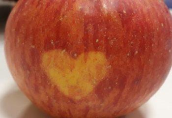 jabolko srce 1